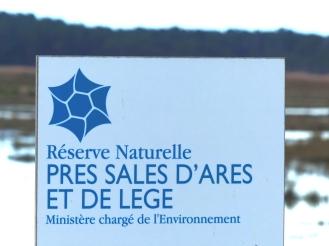 Prés Salés © J.Boissière (Office de Tourisme Arès) (1)