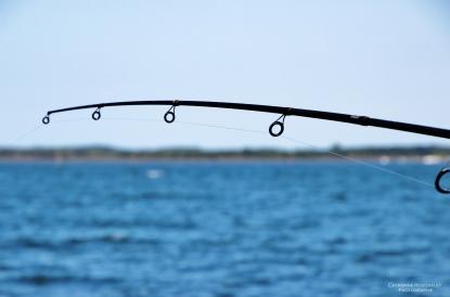 Une petite pêche sur Arès